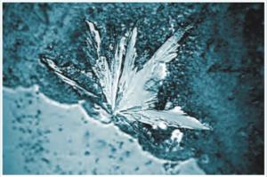Kalkstruktur - mit Aquavital
